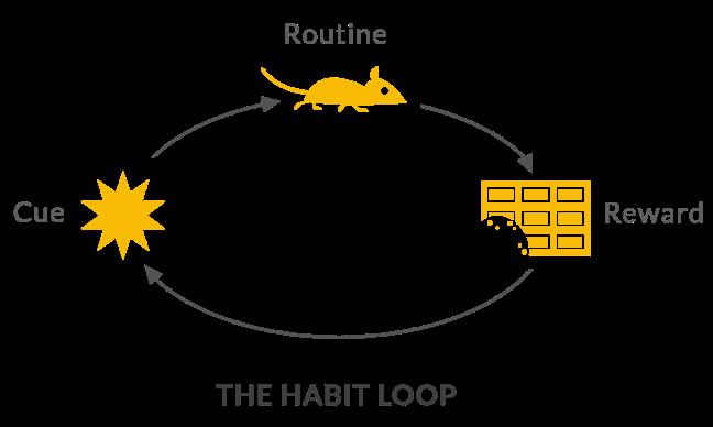 5-habit-loop